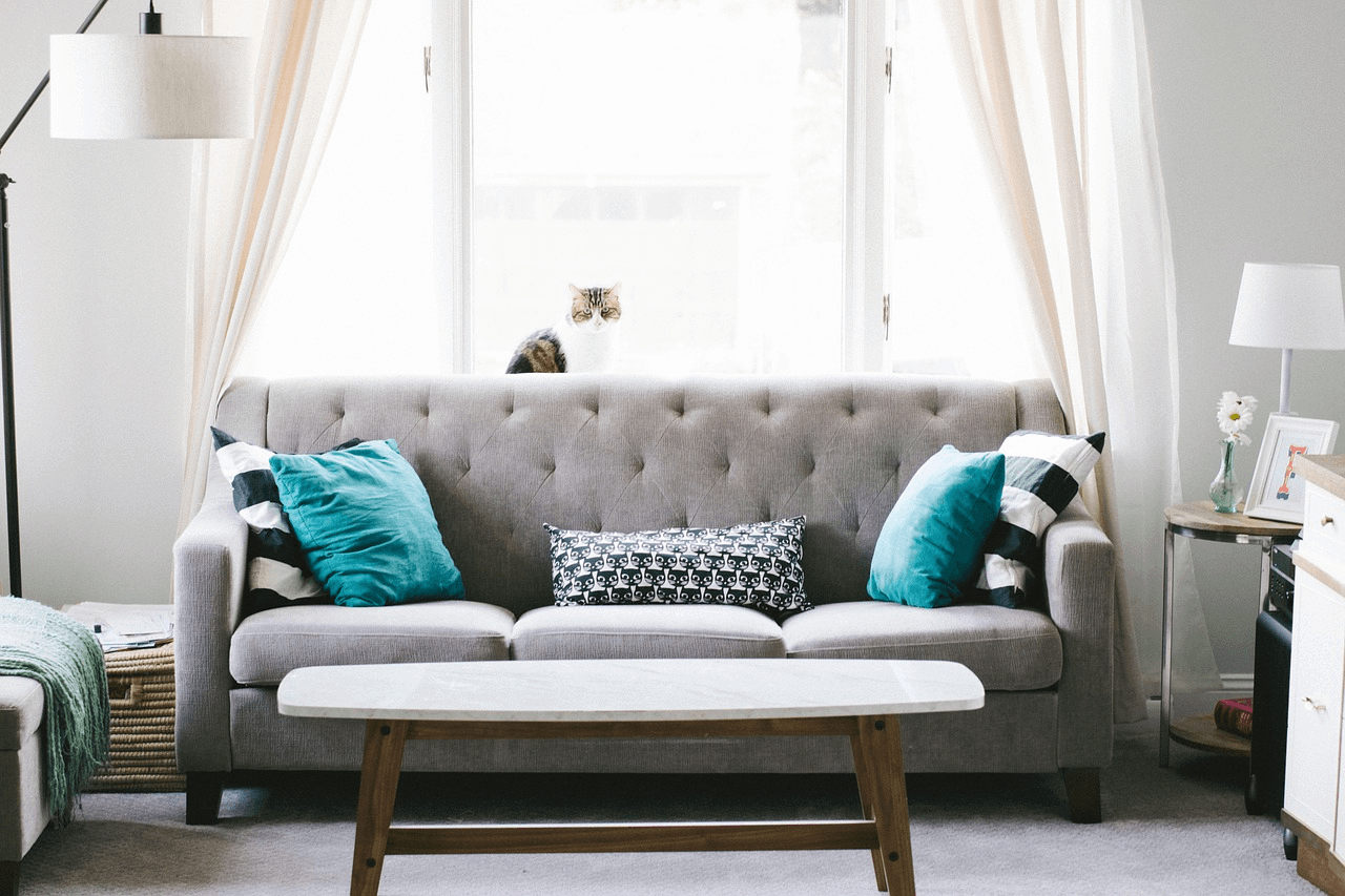 upholstery cleaning